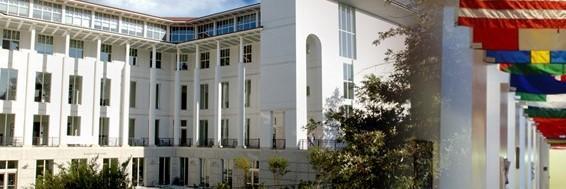 CEU economics and business partner schools